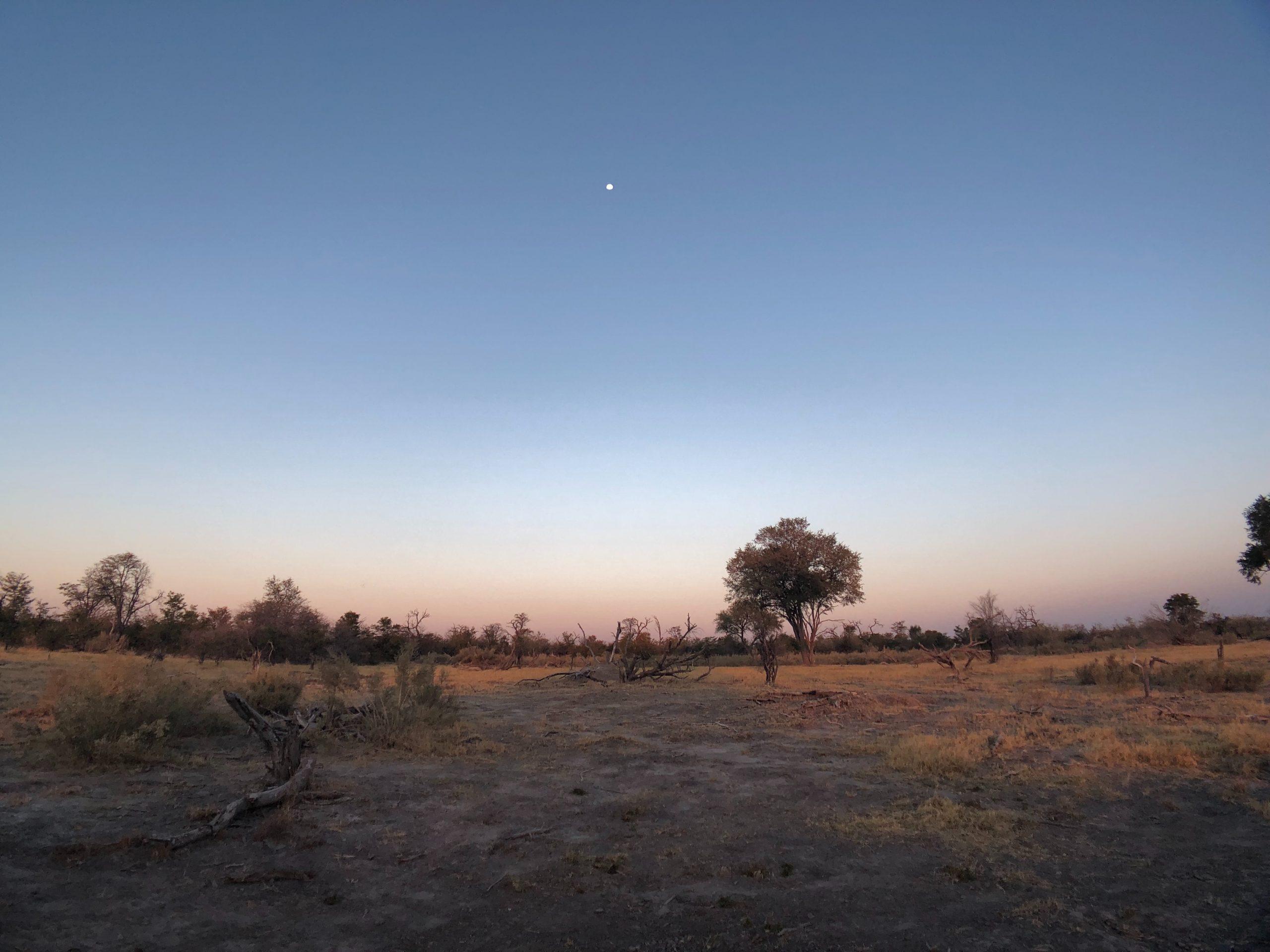 What is the average rainfall in Botswana?